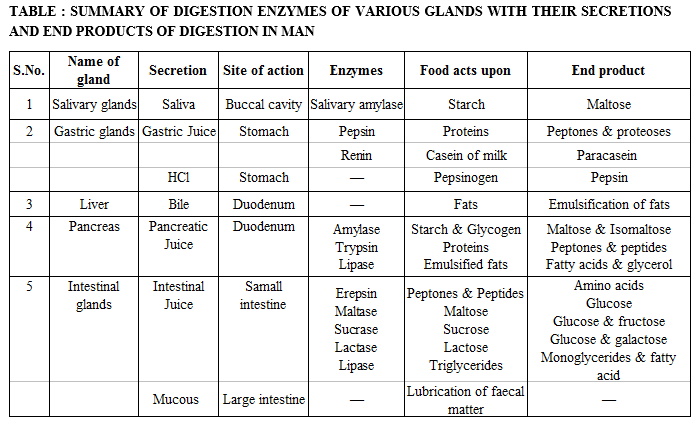Summary Of Digestion Enzymes Of Various Glands With Their